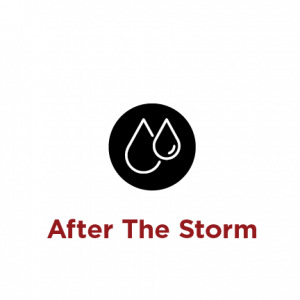 After the storm link